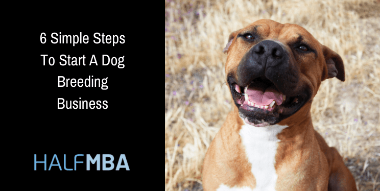 6 Simple Steps To Start A Dog Breeding Business 2