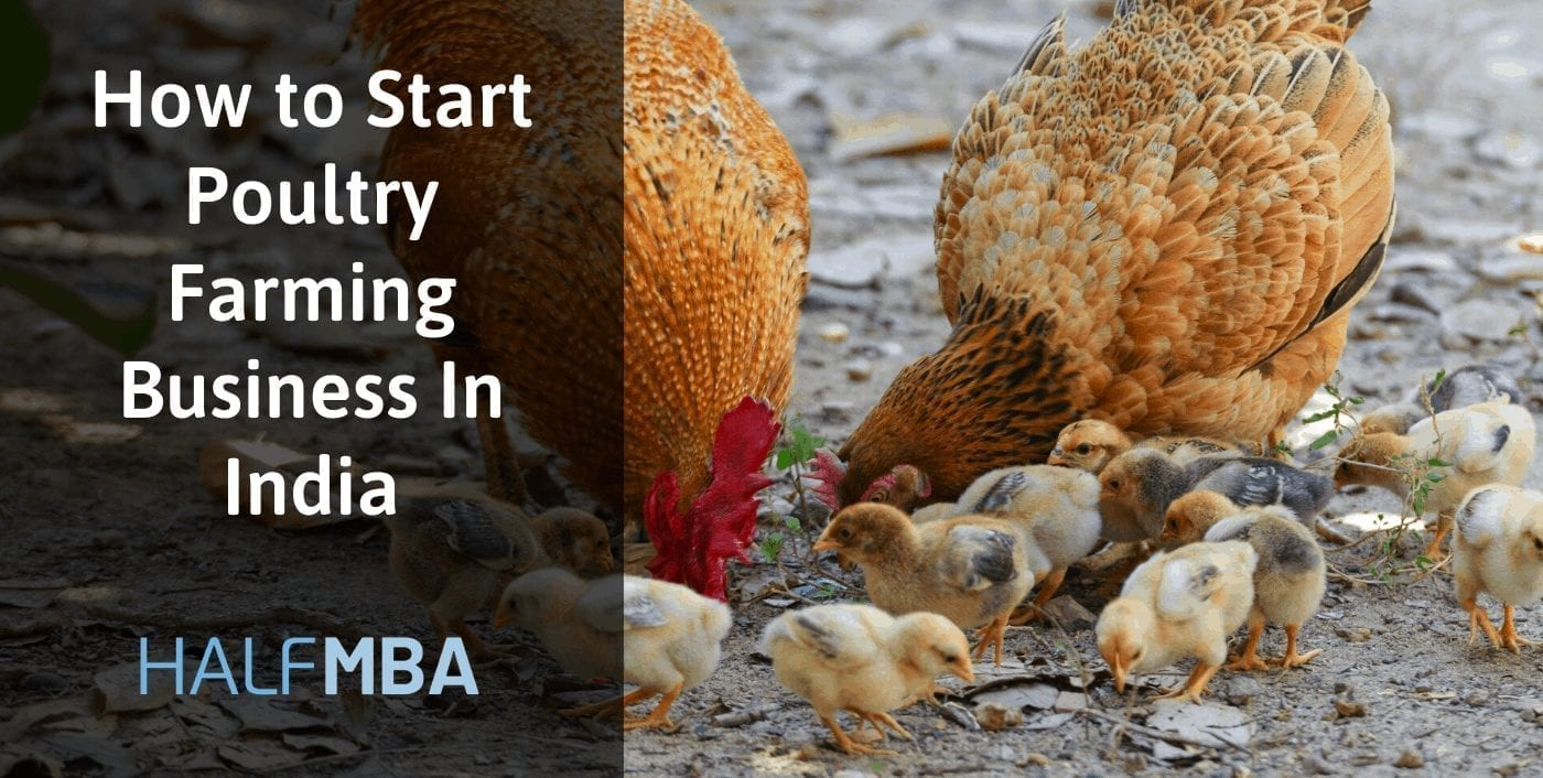Start Poultry Farming Business In India| Learn The Facts