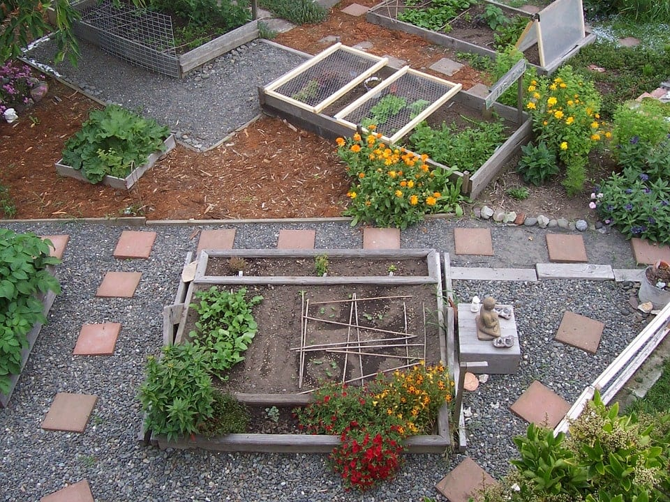 Urban Farming In India- It's Future and Benefits 4